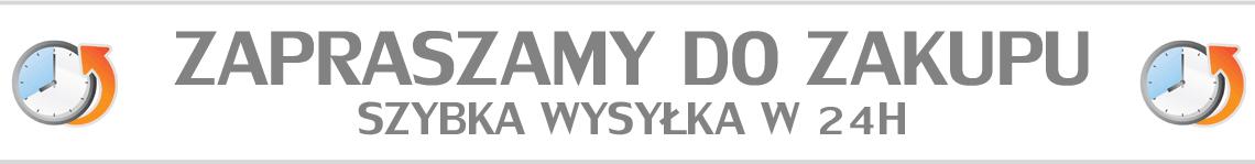 SZYBKA_WYSYLKA.png
